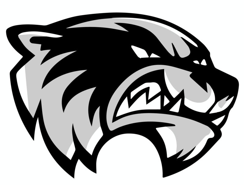 Skyview Wolverines Official Logo