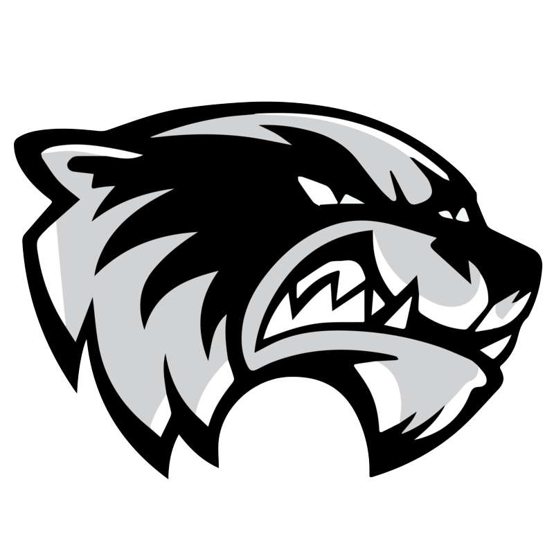 communications    skyview wolverines logos