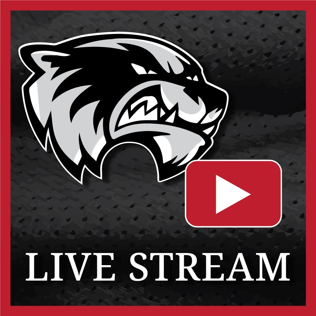 Live-stream Skyview Wolverines Season C home games!